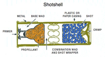 Shotshell Shotgun Cartridge Cut away cross section
